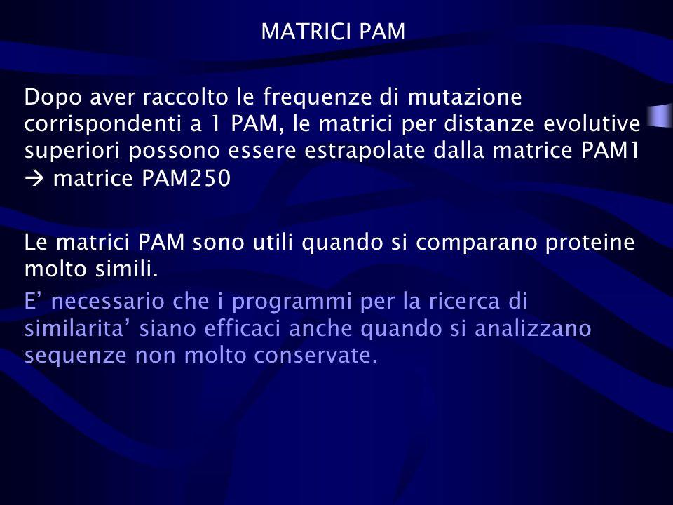 MATRICI PAM Dopo aver raccolto le frequenze di mutazione corrispondenti a 1 PAM, le matrici per distanze evolutive superiori possono essere estrapolat