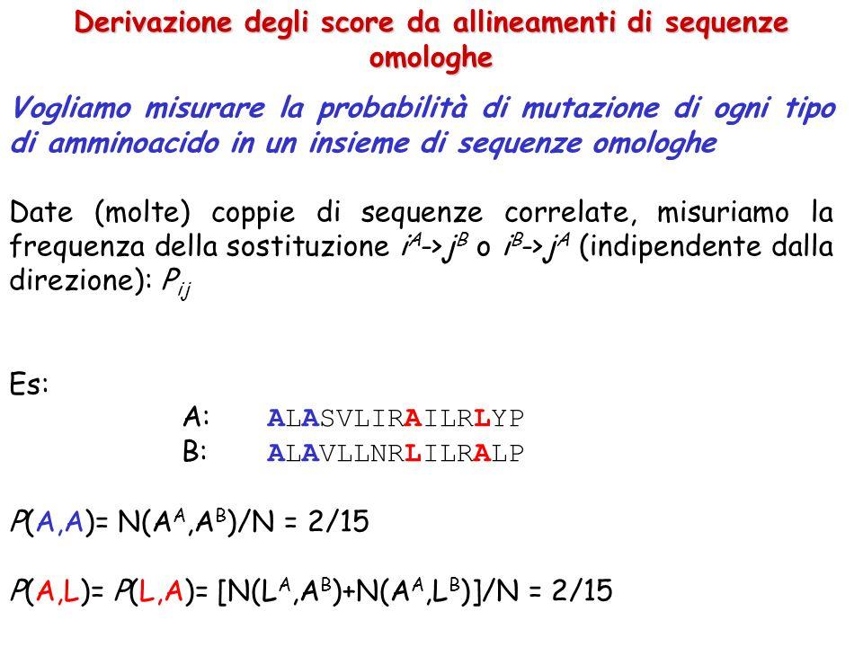 Derivazione degli score da allineamenti di sequenze omologhe Vogliamo misurare la probabilità di mutazione di ogni tipo di amminoacido in un insieme di sequenze omologhe Date (molte) coppie di sequenze correlate, misuriamo la frequenza della sostituzione i A ->j B o i B ->j A (indipendente dalla direzione): P ij Es: A: ALASVLIRAILRLYP B: ALAVLLNRLILRALP P(A,A)= N(A A,A B )/N = 2/15 P(A,L)= P(L,A)= [N(L A,A B )+N(A A,L B )]/N = 2/15