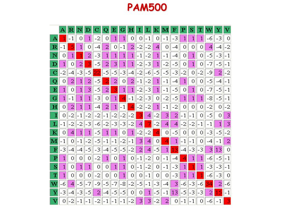 PAM500