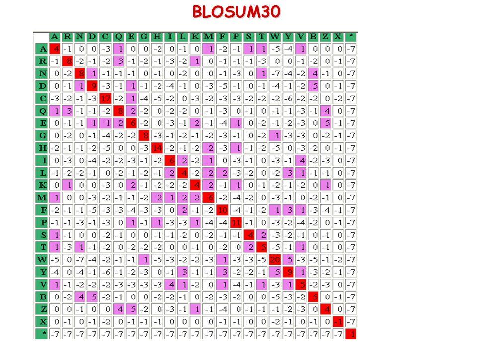 BLOSUM30