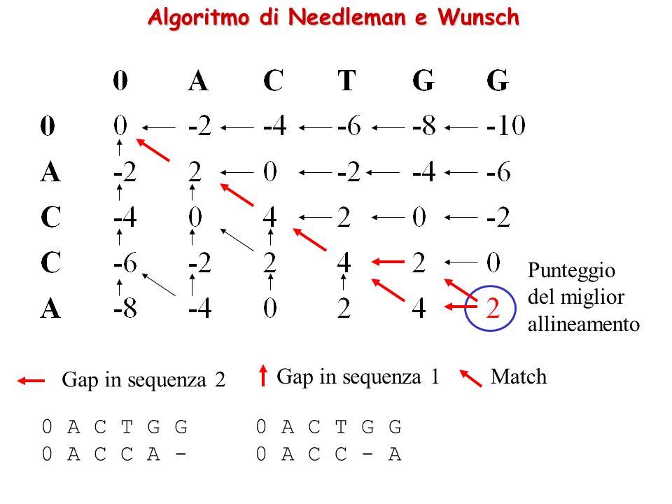 Algoritmo di Needleman e Wunsch 0 A C T G G 0 A C C A - 0 A C T G G 0 A C C - A Gap in sequenza 2 Gap in sequenza 1Match Punteggio del miglior allineamento