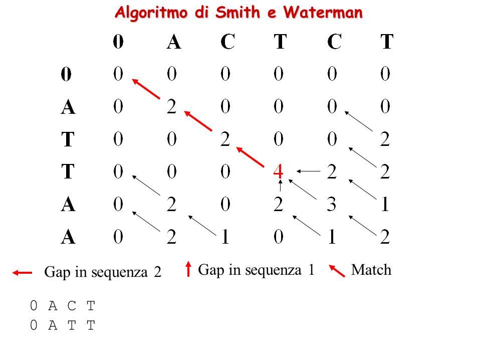Algoritmo di Smith e Waterman 0 A C T 0 A T T Gap in sequenza 2 Gap in sequenza 1Match