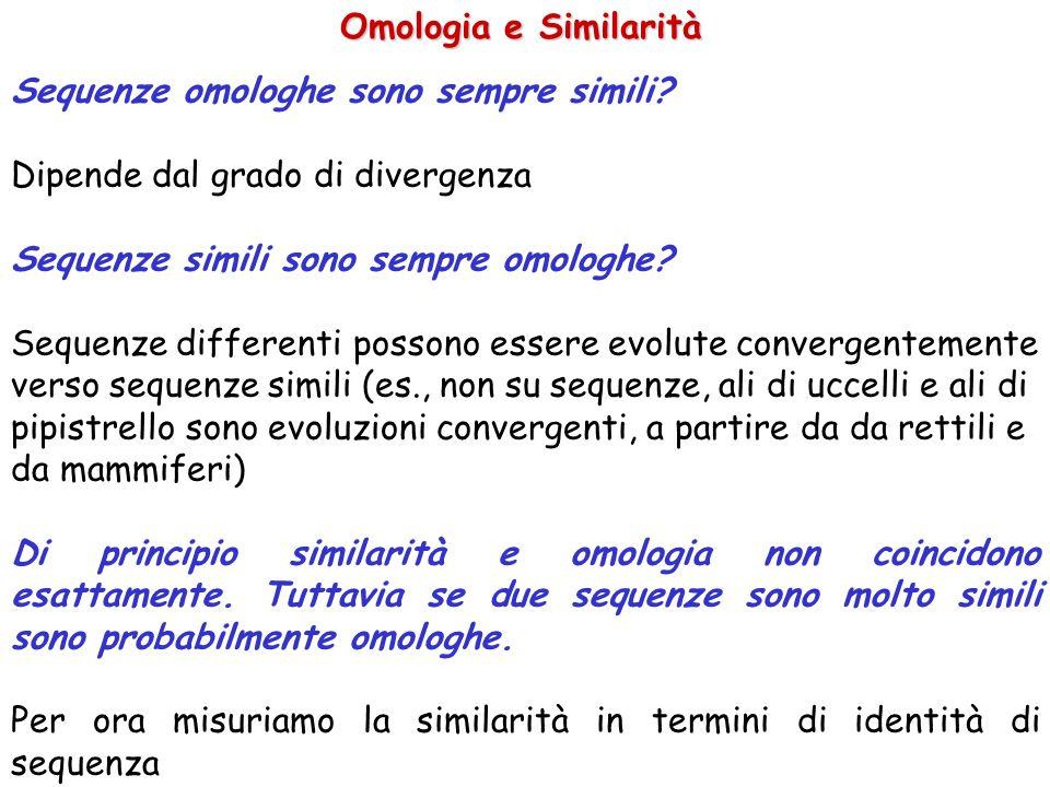 Omologia e Similarità Sequenze omologhe sono sempre simili? Dipende dal grado di divergenza Sequenze simili sono sempre omologhe? Sequenze differenti