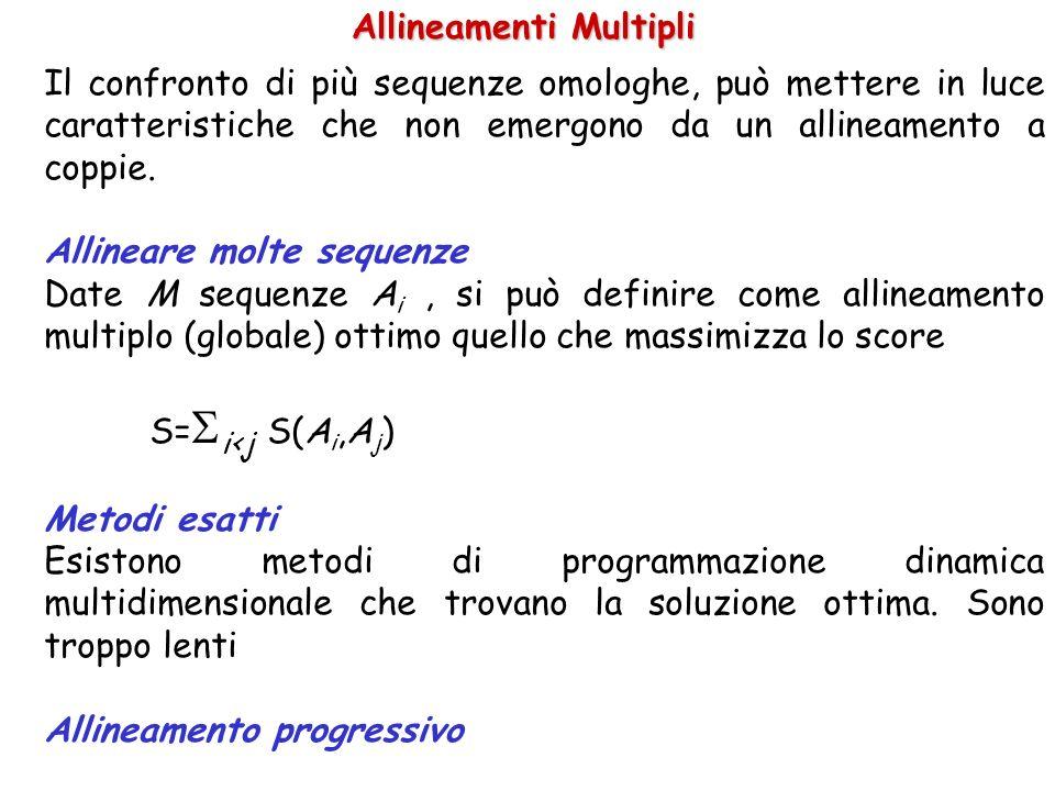 Allineamenti Multipli Il confronto di più sequenze omologhe, può mettere in luce caratteristiche che non emergono da un allineamento a coppie. Allinea
