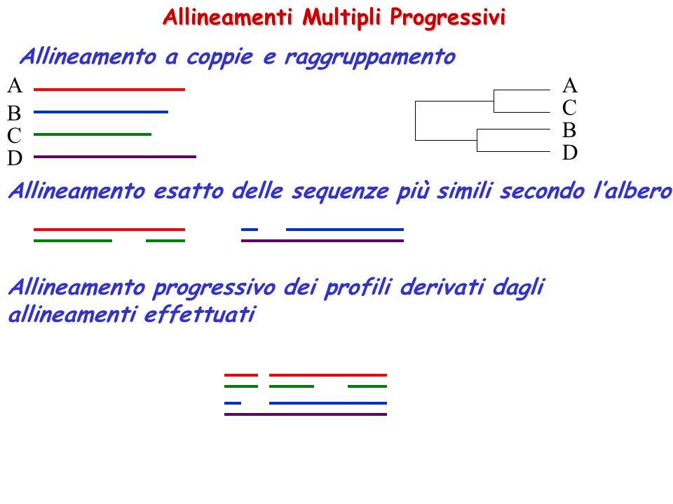 Allineamenti Multipli Progressivi Allineamento a coppie e raggruppamento A B C D A C B D Allineamento esatto delle sequenze più simili secondo lalbero Allineamento progressivo dei profili derivati dagli allineamenti effettuati