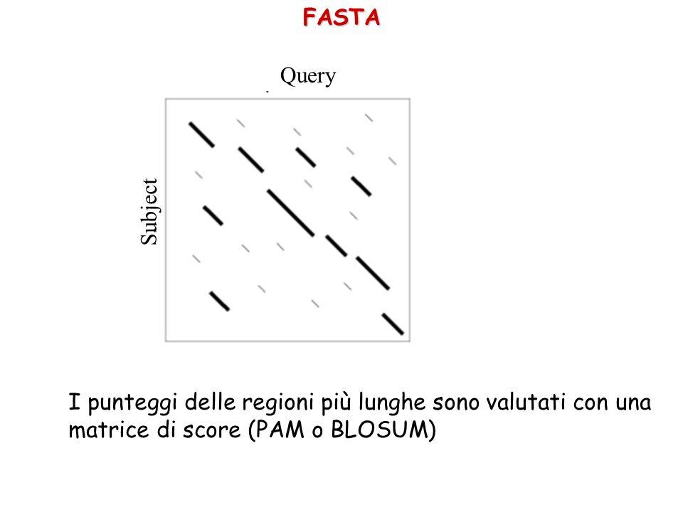 FASTA Query Subject I punteggi delle regioni più lunghe sono valutati con una matrice di score (PAM o BLOSUM)