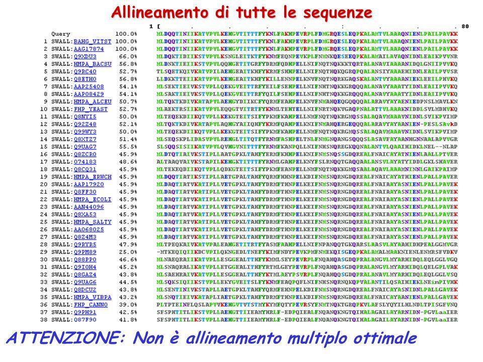 Allineamento di tutte le sequenze ATTENZIONE: Non è allineamento multiplo ottimale
