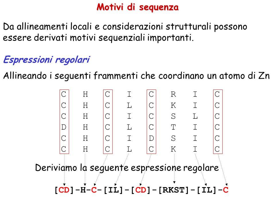 Motivi di sequenza Da allineamenti locali e considerazioni strutturali possono essere derivati motivi sequenziali importanti. Espressioni regolari All