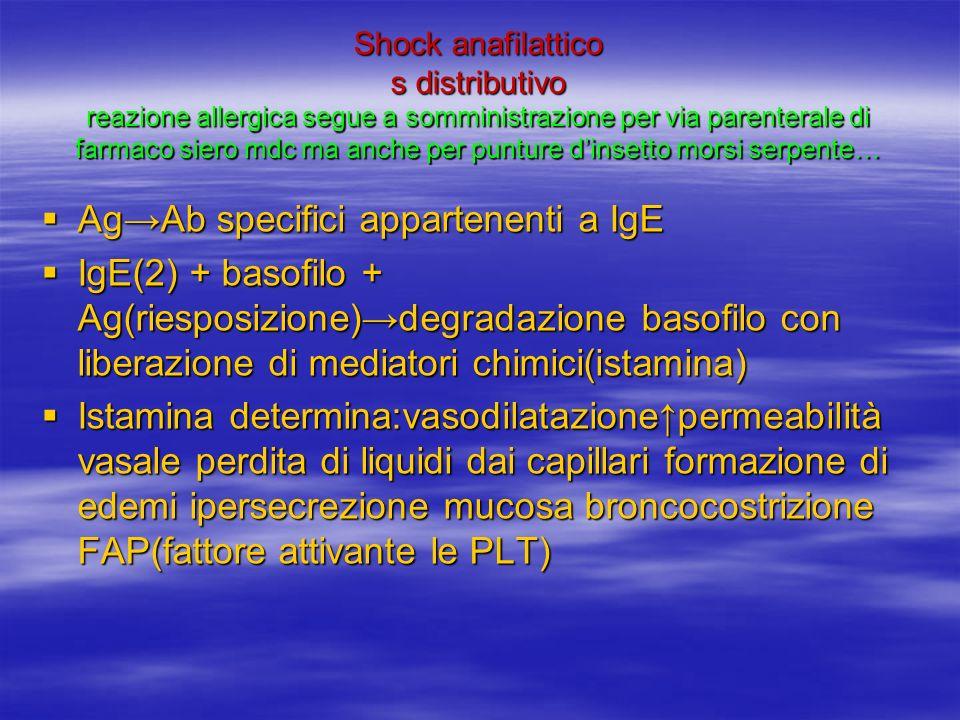 Shock anafilattico s distributivo reazione allergica segue a somministrazione per via parenterale di farmaco siero mdc ma anche per punture dinsetto morsi serpente… AgAb specifici appartenenti a IgE AgAb specifici appartenenti a IgE IgE(2) + basofilo + Ag(riesposizione)degradazione basofilo con liberazione di mediatori chimici(istamina) IgE(2) + basofilo + Ag(riesposizione)degradazione basofilo con liberazione di mediatori chimici(istamina) Istamina determina:vasodilatazionepermeabilità vasale perdita di liquidi dai capillari formazione di edemi ipersecrezione mucosa broncocostrizione FAP(fattore attivante le PLT) Istamina determina:vasodilatazionepermeabilità vasale perdita di liquidi dai capillari formazione di edemi ipersecrezione mucosa broncocostrizione FAP(fattore attivante le PLT)