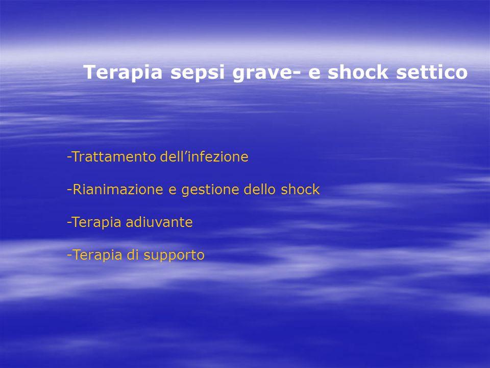Terapia sepsi grave- e shock settico -Trattamento dellinfezione -Rianimazione e gestione dello shock -Terapia adiuvante -Terapia di supporto