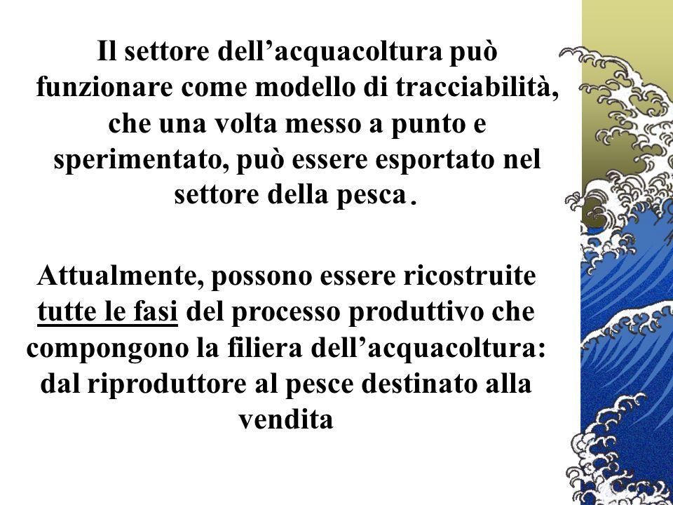 Attualmente, possono essere ricostruite tutte le fasi del processo produttivo che compongono la filiera dellacquacoltura: dal riproduttore al pesce destinato alla vendita Il settore dellacquacoltura può funzionare come modello di tracciabilità, che una volta messo a punto e sperimentato, può essere esportato nel settore della pesca.