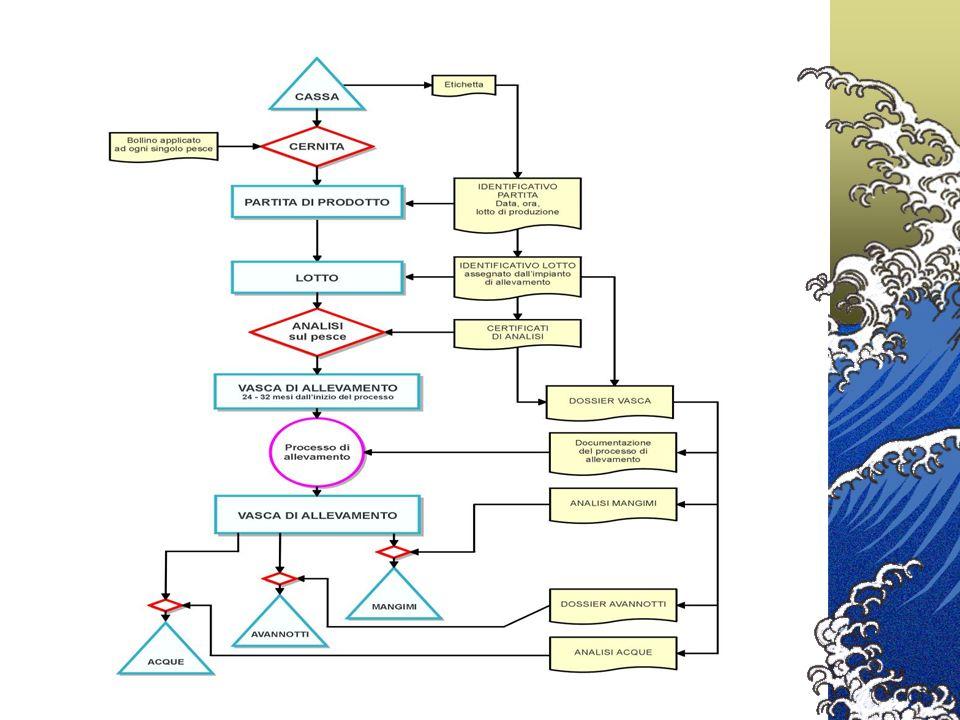 Ciclo di distribuzione comune PESCA E ACQUACOLTURA