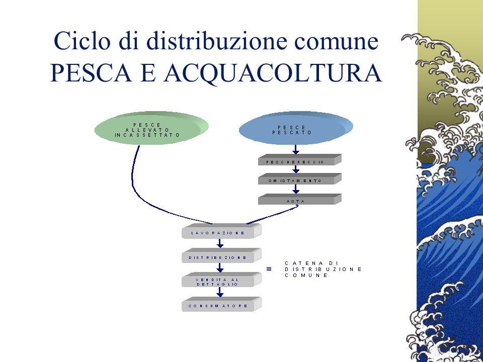 EAN International, per lapplicazione della tracciabilità nel settore ittico, ha definito una soluzione basata sullo standard EAN/UCC Nellambito di questo progetto INDICOD ha avviato la propria attività con lo scopo di realizzare un sistema uniforme per la tracciabilità e letichettatura