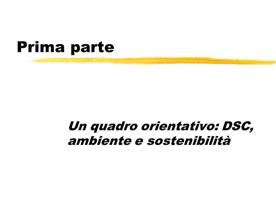 Prima parte Un quadro orientativo: DSC, ambiente e sostenibilità