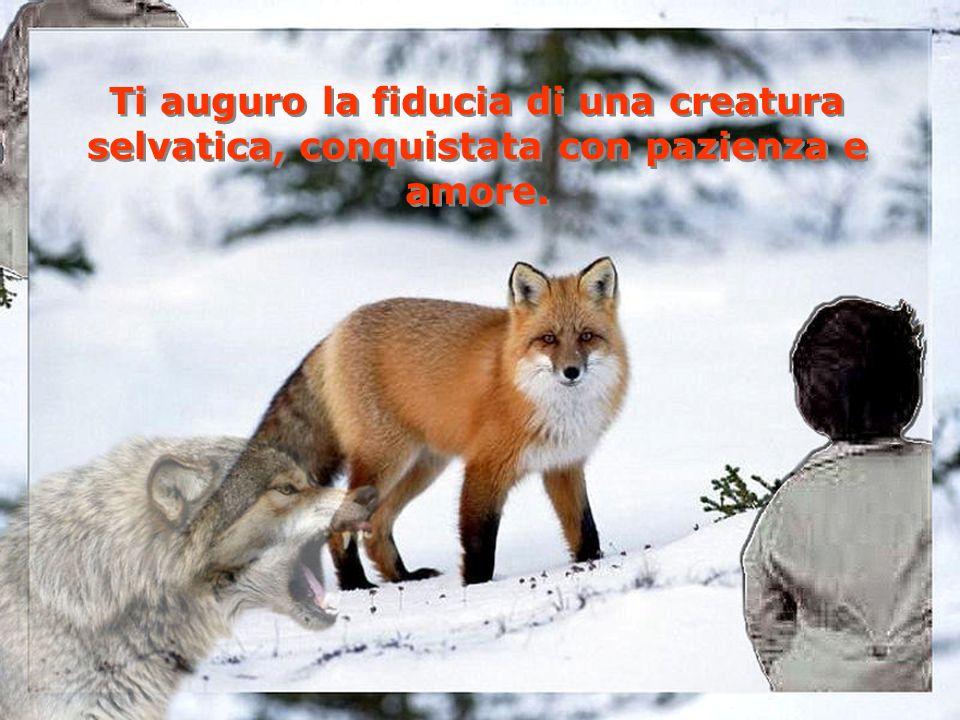 Ti auguro di rimanere affascinato dallinfinita varietà della vita animale… Ti auguro di rimanere affascinato dallinfinita varietà della vita animale…