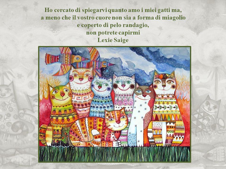 Coloro che odiano i gatti verranno sepolti sotto la pioggia Proverbio olandese