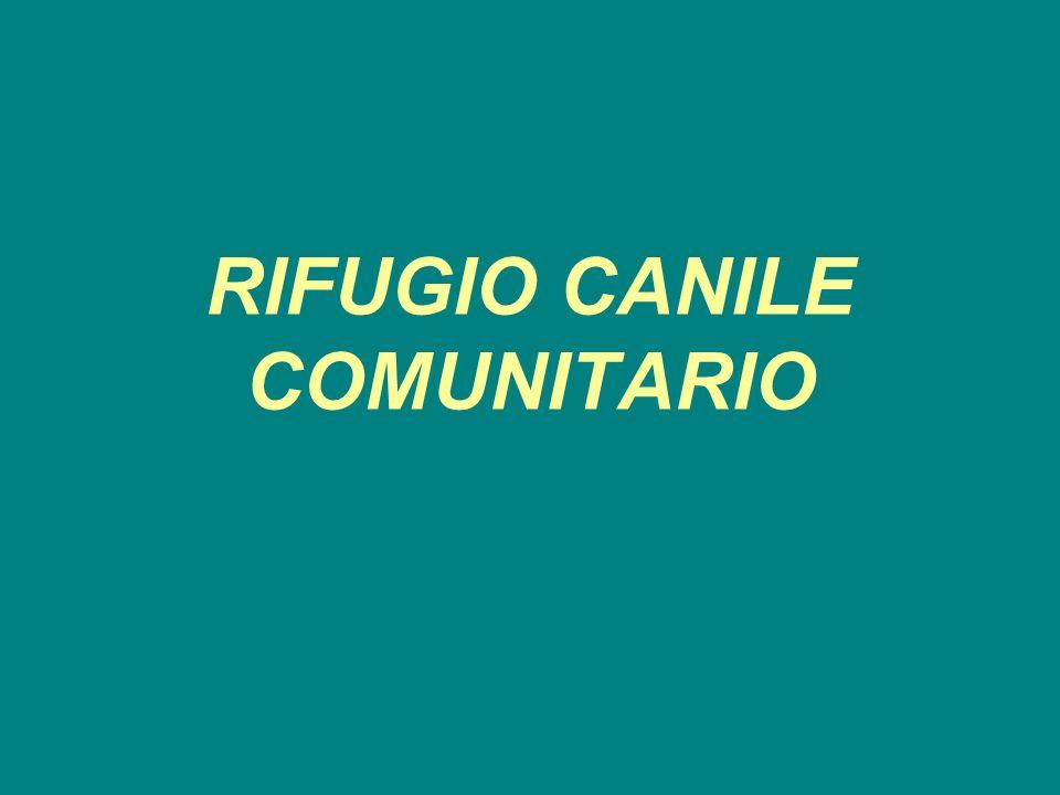 RIFUGIO CANILE COMUNITARIO