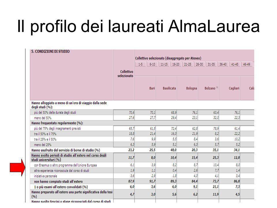 Il profilo dei laureati AlmaLaurea