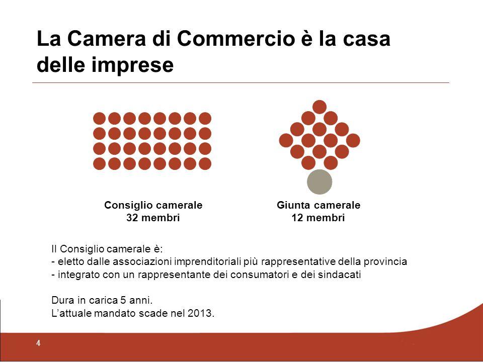 5 Le caratteristiche dell«Impresa Padova» 54,1% Commercio & Servizi Industria Agricoltura 17,5% 28,4% Imprese femminili (25,7%) Imprese titolari stranieri (3,9%) Imprese per macrosettori Fonte Ufficio studi camerale – 2009