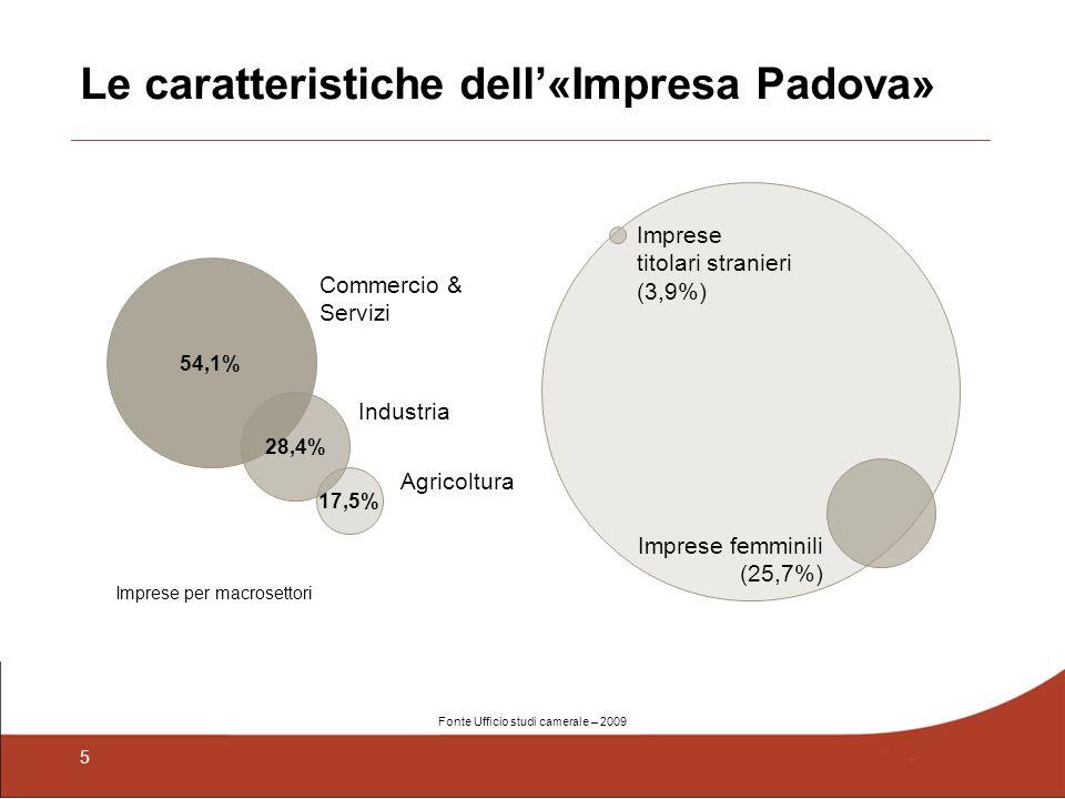 5 Le caratteristiche dell«Impresa Padova» 54,1% Commercio & Servizi Industria Agricoltura 17,5% 28,4% Imprese femminili (25,7%) Imprese titolari stran