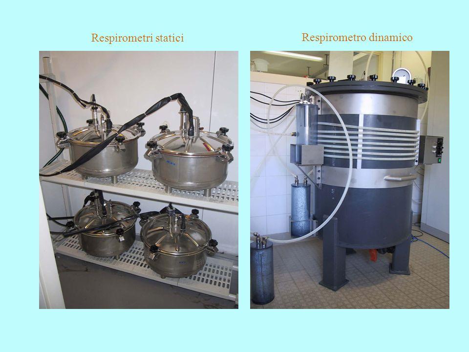 Respirometri statici Respirometro dinamico