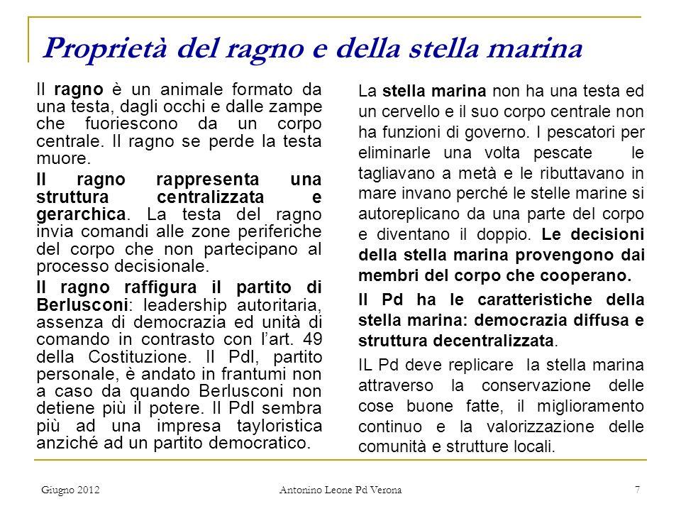 Giugno 2012 Antonino Leone Pd Verona 7 Proprietà del ragno e della stella marina Il ragno è un animale formato da una testa, dagli occhi e dalle zampe che fuoriescono da un corpo centrale.
