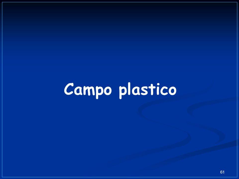 61 Campo plastico