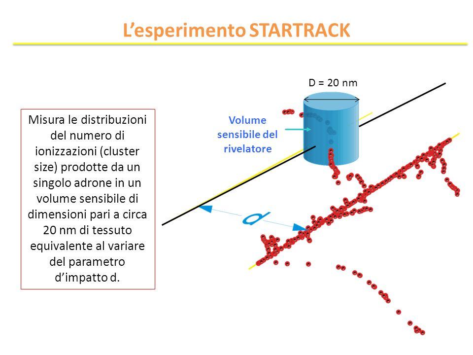 Volume sensibile del rivelatore Misura le distribuzioni del numero di ionizzazioni (cluster size) prodotte da un singolo adrone in un volume sensibile