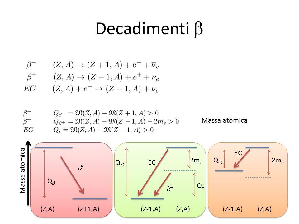 Decadimenti Massa atomica Q Q - Q EC 2m e Q EC 2m e EC + (Z,A)(Z+1,A)(Z-1,A)(Z,A)(Z-1,A)(Z,A) Massa atomica