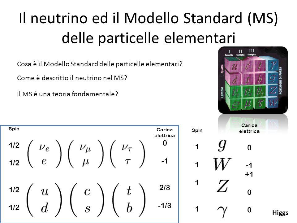 Il neutrino ed il Modello Standard (MS) delle particelle elementari Spin 1/2 Carica elettrica 0 2/3 -1/3 Carica elettrica 0 +1 0 Spin 1 Cosa è il Mode