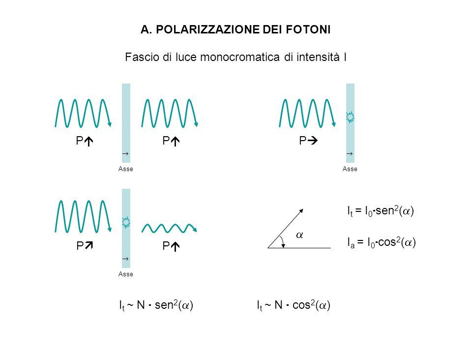 A. POLARIZZAZIONE DEI FOTONI P Asse P P Asse P Asse P I t = I 0 sen 2 ( ) I a = I 0 cos 2 ( ) Fascio di luce monocromatica di intensità I I t ~ N sen
