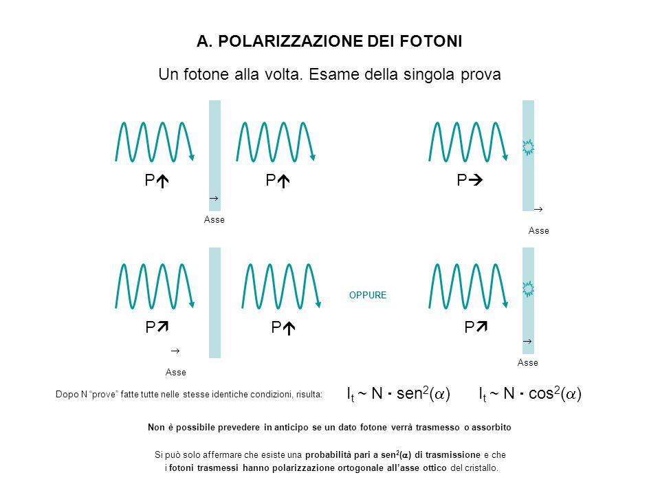 A. POLARIZZAZIONE DEI FOTONI P Asse P P P Asse Un fotone alla volta. Esame della singola prova I t ~ N sen 2 ( )I t ~ N cos 2 ( ) P OPPURE P Dopo N pr