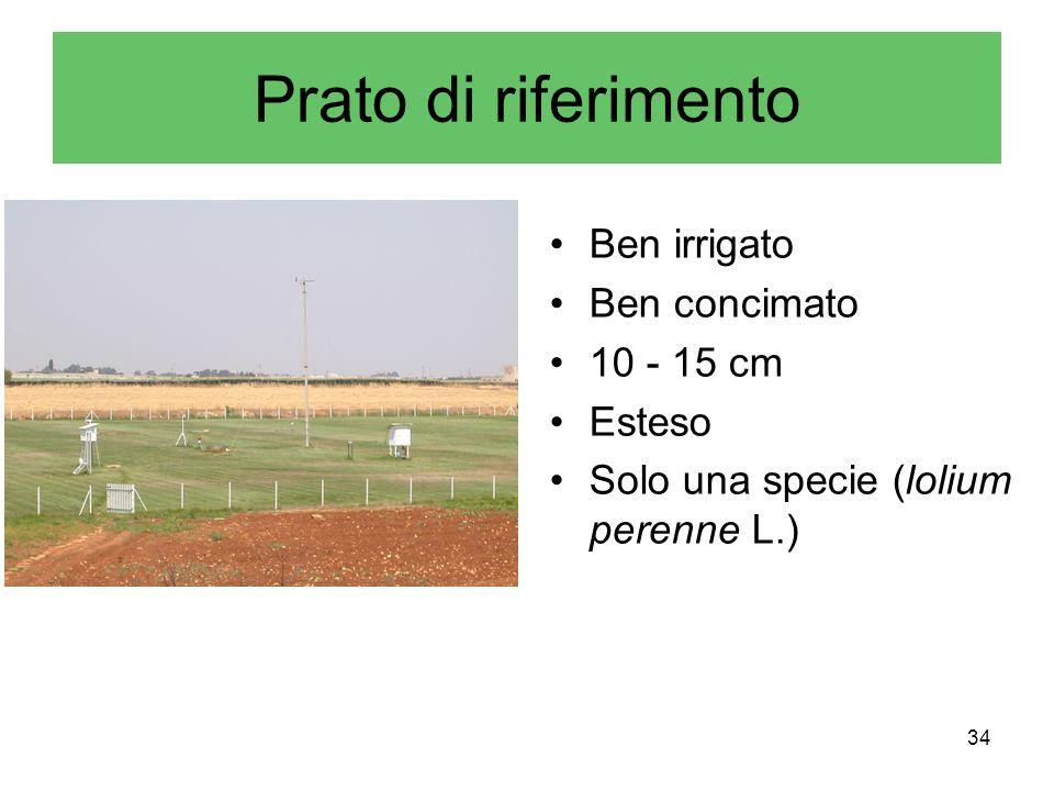 34 Prato di riferimento Ben irrigato Ben concimato 10 - 15 cm Esteso Solo una specie (lolium perenne L.)
