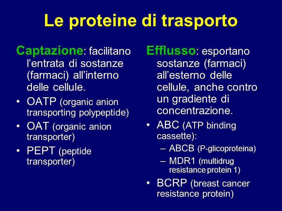Le proteine di trasporto Captazione : facilitano lentrata di sostanze (farmaci) allinterno delle cellule. OATP (organic anion transporting polypeptide
