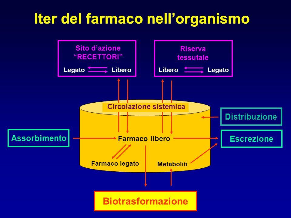 Biotrasformazione Assorbimento Escrezione Farmaco libero Farmaco legato Metaboliti LegatoLibero Iter del farmaco nellorganismo Sito dazione RECETTORI