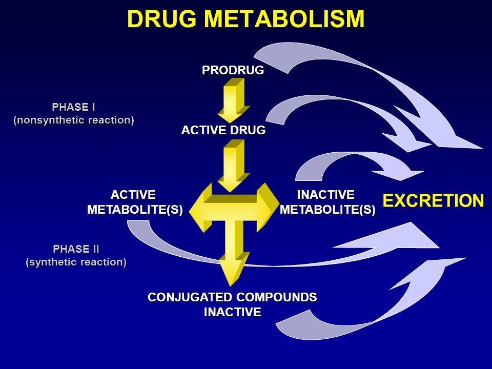 DRUG METABOLISM PRODRUG ACTIVE DRUG ACTIVEMETABOLITE(S)INACTIVEMETABOLITE(S) EXCRETION CONJUGATED COMPOUNDS INACTIVE PHASE I (nonsynthetic reaction) P