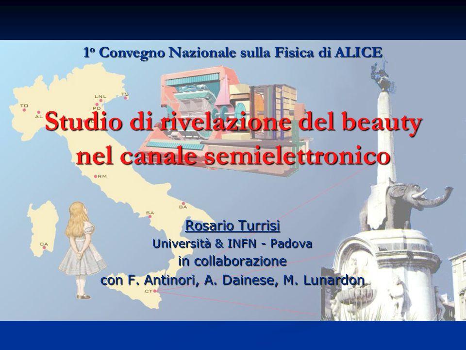 Studio di rivelazione del beauty nel canale semielettronico Rosario Turrisi Università & INFN - Padova in collaborazione con F. Antinori, A. Dainese,