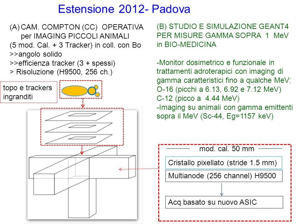Estensione 2012- Padova (A)CAM. COMPTON (CC) OPERATIVA per IMAGING PICCOLI ANIMALI (5 mod.