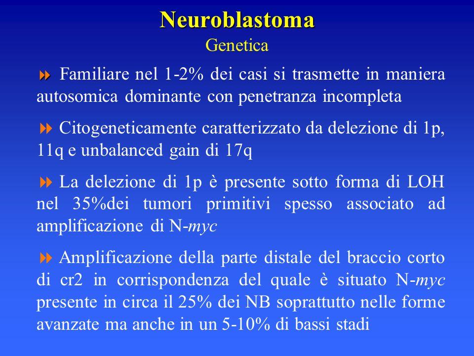 Neuroblastoma Neuroblastoma Genetica Familiare nel 1-2% dei casi si trasmette in maniera autosomica dominante con penetranza incompleta Citogeneticame