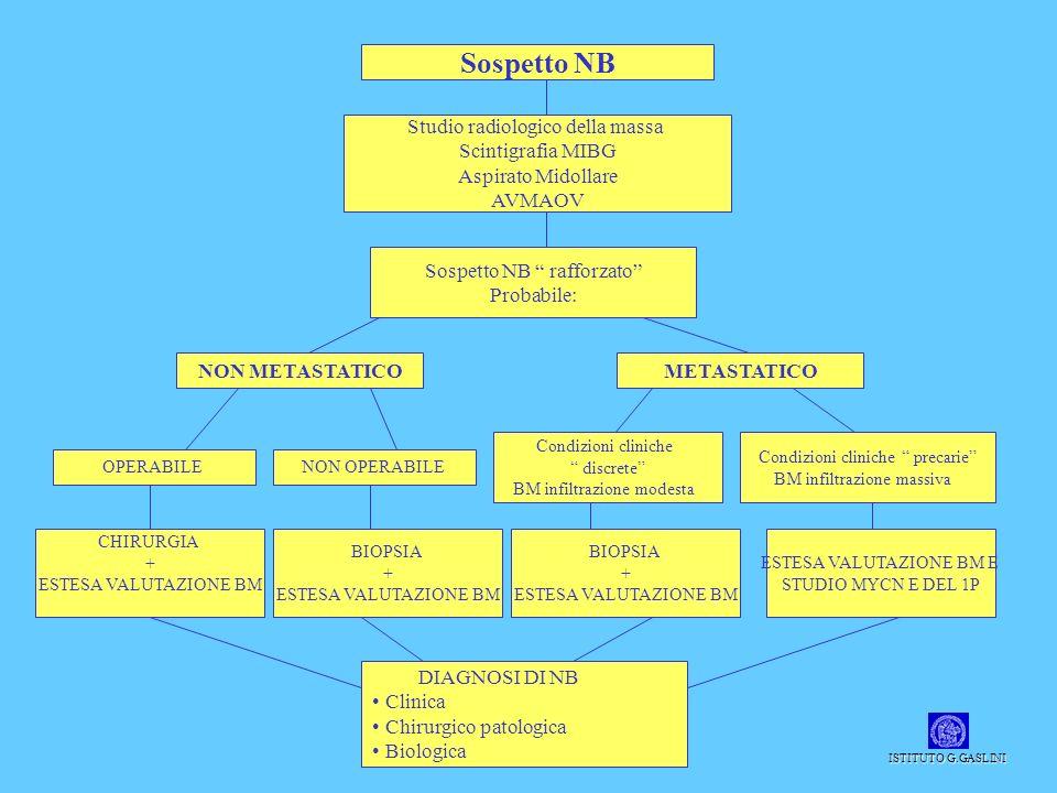 Sospetto NB Studio radiologico della massa Scintigrafia MIBG Aspirato Midollare AVMAOV Sospetto NB rafforzato Probabile: NON METASTATICO OPERABILENON