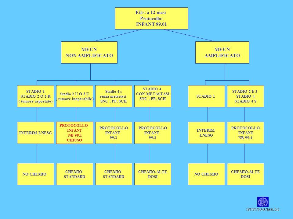 Età< a 12 mesi Protocollo: INFANT 99.01 MYCN NON AMPLIFICATO MYCN AMPLIFICATO STADIO 1 STADIO 2 O 3 R ( tumore asportato) Stadio 2 U O 3 U ( tumore in