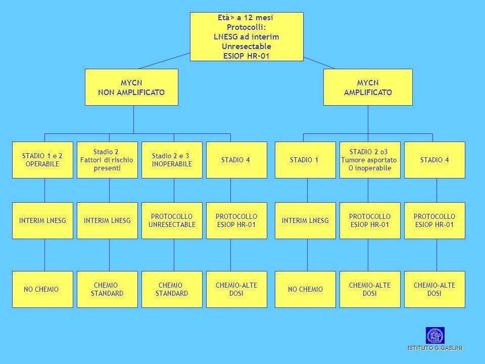 Età> a 12 mesi Protocolli: LNESG ad interim Unresectable ESIOP HR-01 MYCN NON AMPLIFICATO MYCN AMPLIFICATO STADIO 1 e 2 OPERABILE Stadio 2 Fattori di