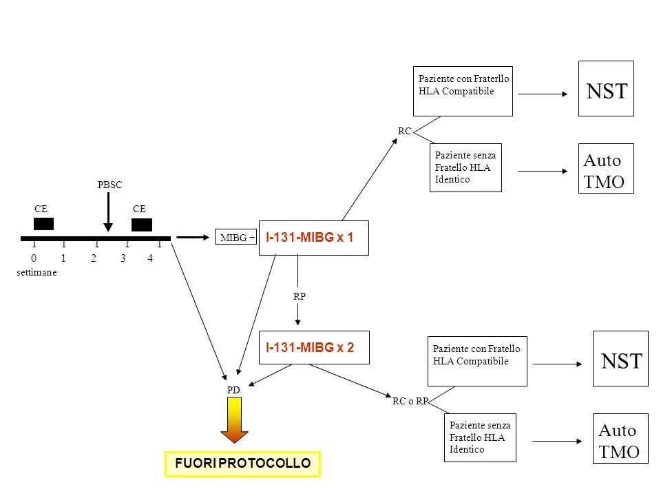 I I I I I 0 1 2 3 4 CE PBSC settimane MIBG + I-131-MIBG x 1 PD FUORI PROTOCOLLO I-131-MIBG x 2 RP Paziente senza Fratello HLA Identico NST Paziente co