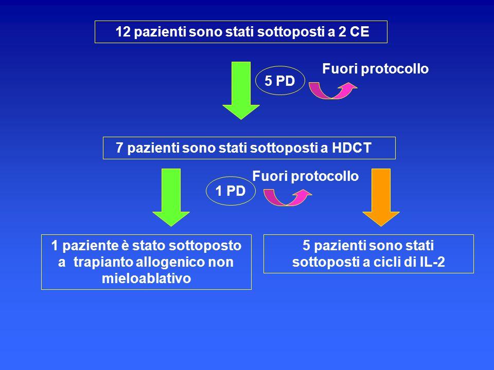 12 pazienti sono stati sottoposti a 2 CE 7 pazienti sono stati sottoposti a HDCT 5 PD 1 paziente è stato sottoposto a trapianto allogenico non mieloab