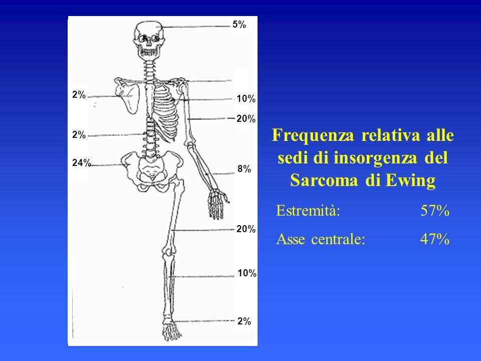 5% 10% 20% 2% 24% Frequenza relativa alle sedi di insorgenza del Sarcoma di Ewing Estremità: 57% Asse centrale: 47% 10% 8% 2%