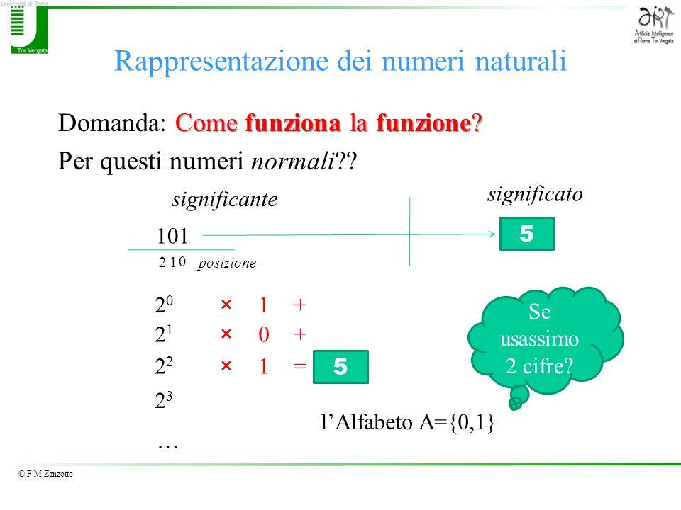 © F.M.Zanzotto Rappresentazione dei numeri naturali Come funziona la funzione? Domanda: Come funziona la funzione? Per questi numeri normali?? 101 sig