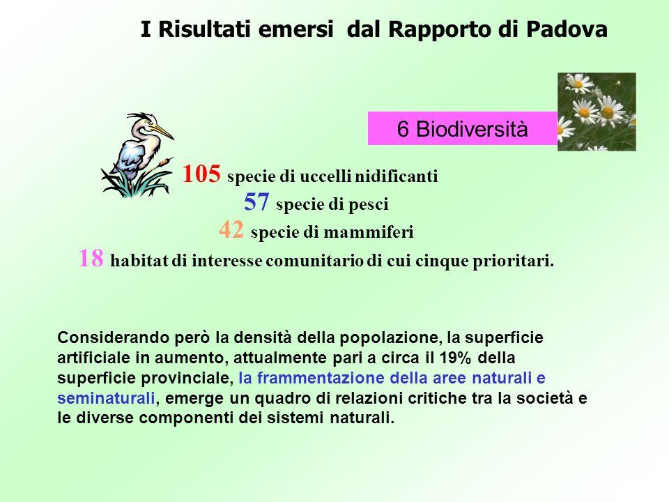 I Risultati emersi dal Rapporto di Padova 6 Biodiversità Considerando però la densità della popolazione, la superficie artificiale in aumento, attualm