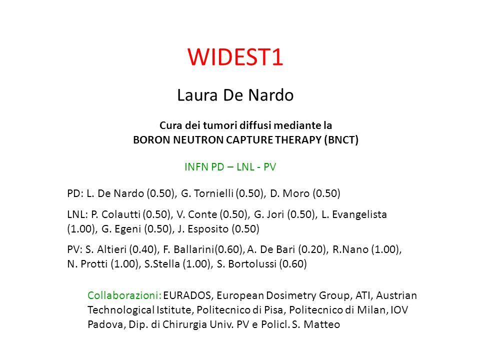 WIDEST1 Laura De Nardo Cura dei tumori diffusi mediante la BORON NEUTRON CAPTURE THERAPY (BNCT) INFN PD – LNL - PV Collaborazioni: EURADOS, European D