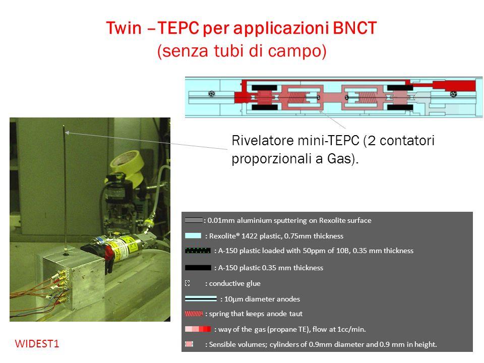 Twin –TEPC per applicazioni BNCT (senza tubi di campo) Rivelatore mini-TEPC (2 contatori proporzionali a Gas). : 0.01mm aluminium sputtering on Rexoli