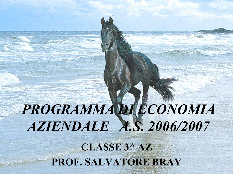 PROGRAMMA DI ECONOMIA AZIENDALE A.S. 2006/2007 CLASSE 3^ AZ PROF. SALVATORE BRAY